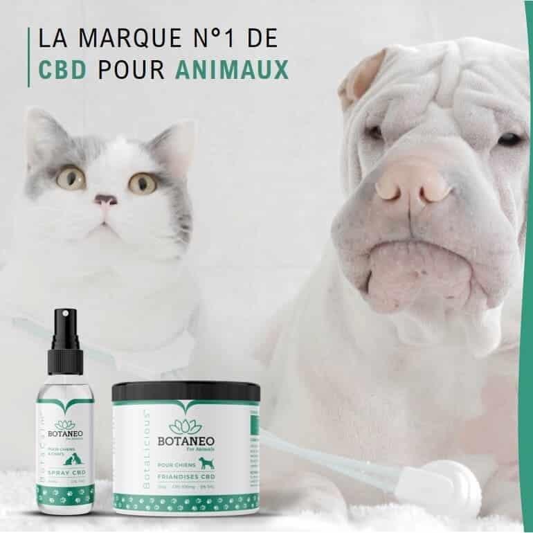 CBD pour chien et chat - La marque n°1 de CBD pour animaux - Botaneo