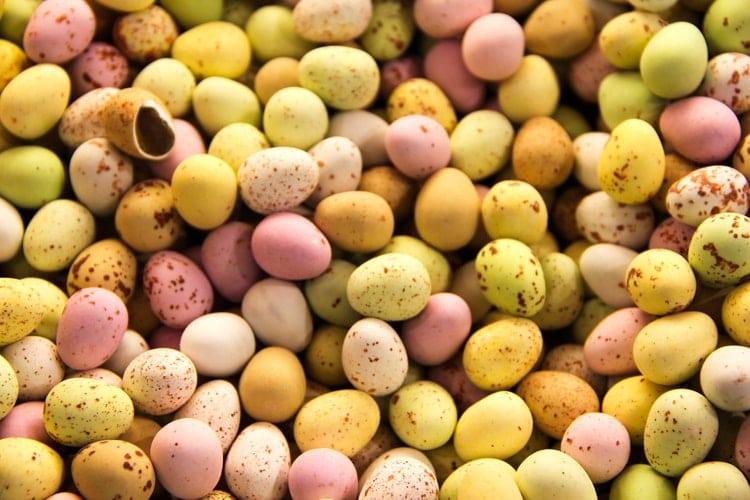 Pâques : Pourquoi vous ne devriez jamais donner du chocolat à votre chien