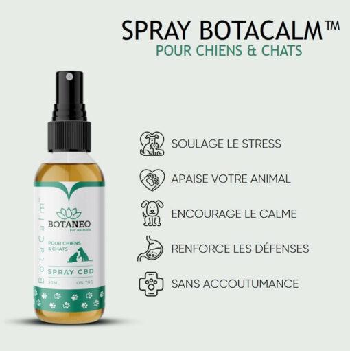 Huile Spray CBD Chien Chat BotaCalm Qualités