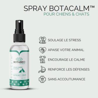 Spray CBD Chien Chat BotaCalm Qualités