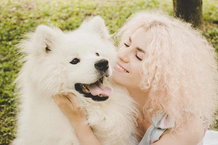 Les chiens sont le meilleur animal de compagnie