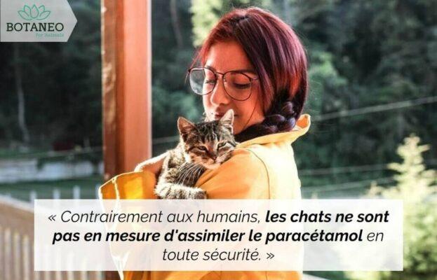 Peut on donner un médicament humain à un chat qui souffre