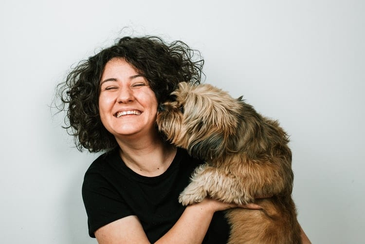 A quoi penser avant d'adopter un chien de refuge