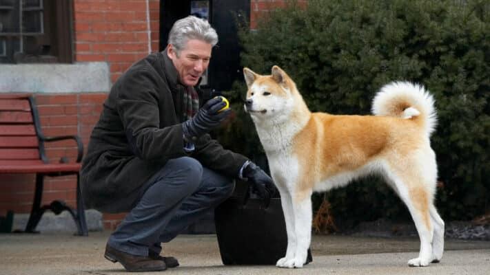 meilleur film avec chien personnage principal
