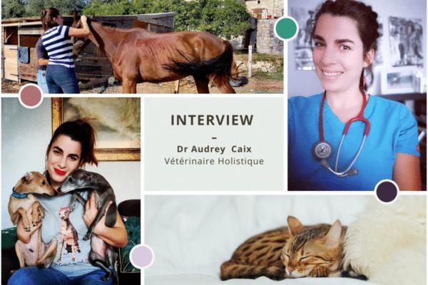 Audrey Caix médecine vétérinaire traditionnelle chinoise cote d'azur