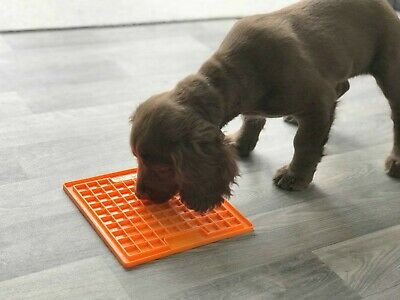 Tapis de léchage chien jeu d'occupation contre le stress l'ennui bienfaits avantages effets utilisation meilleur produit