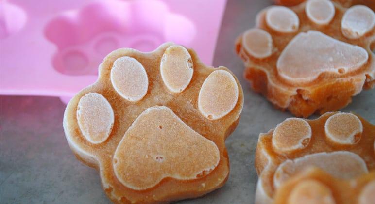 recette de glace chien forme patte