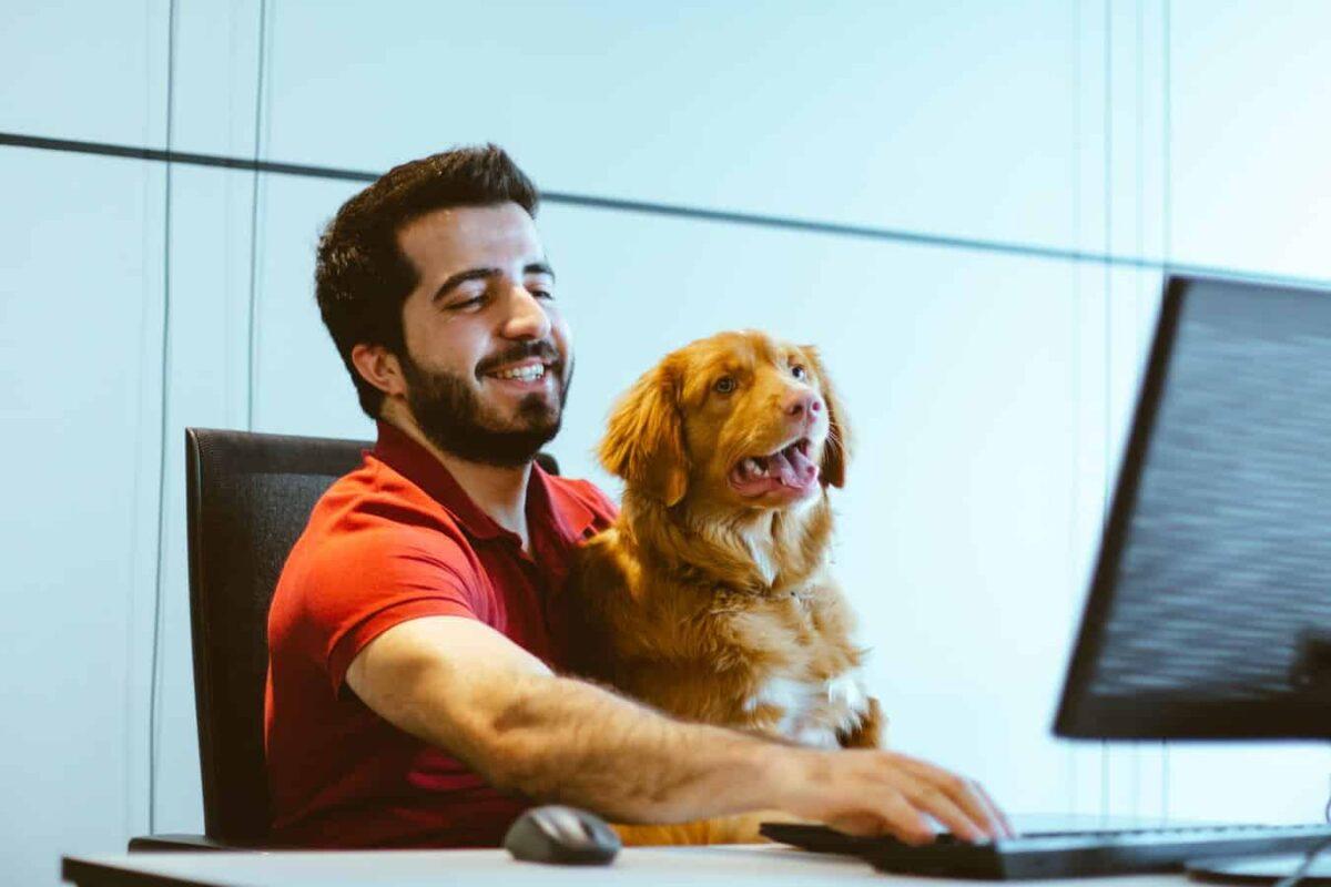 chien et maître bureau