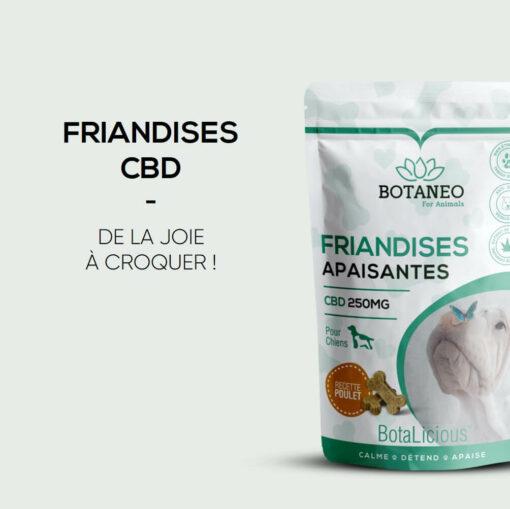 Friandises apaisantes pour chien au cbd naturel de marque Botaneo