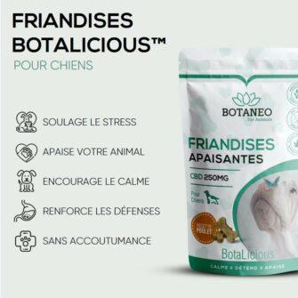 Friandises pour chien Botaneo - Avantage CBD pour animaux