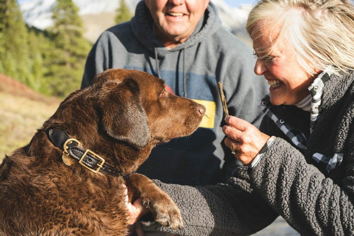 grand parent senior retraité chien qui rit