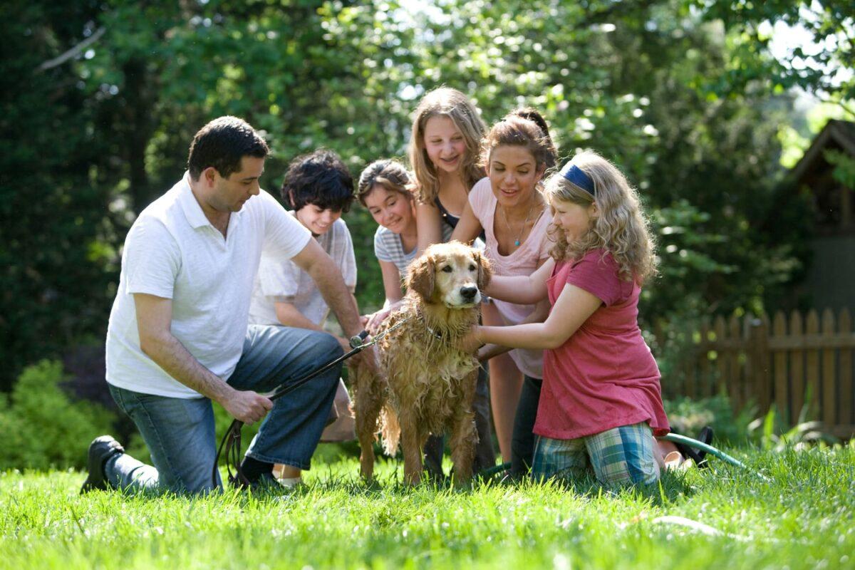 famille avec enfant qui lave chien