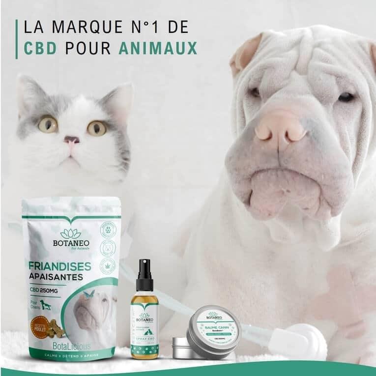 Produits apaisants pour animaux