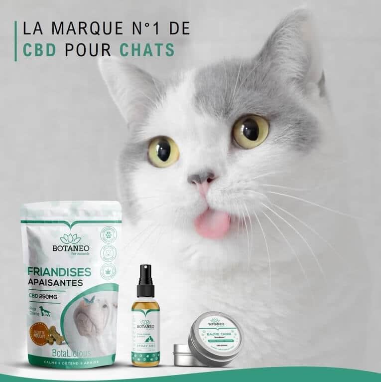 Produits apaisants pour chat