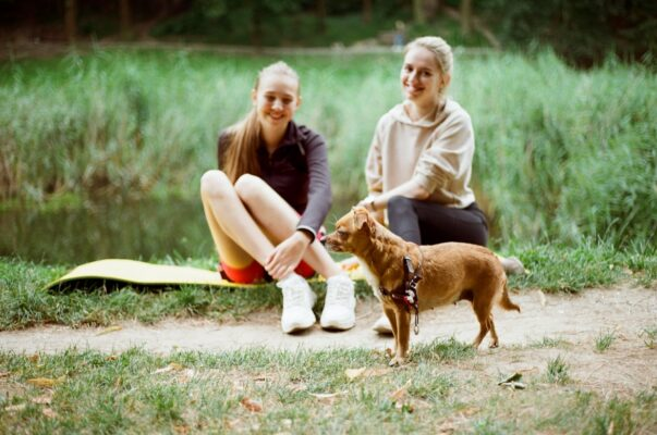 chien anxieux zen runneuse tapis de sport parc